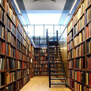 Библиотеки Лисков